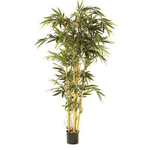 Plante artificielle comparer les prix de plante for Plante artificielle prix