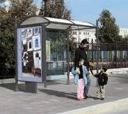 Abri bus lot / structure en aluminium / bardage en verre securit  / 250 x 158 cm