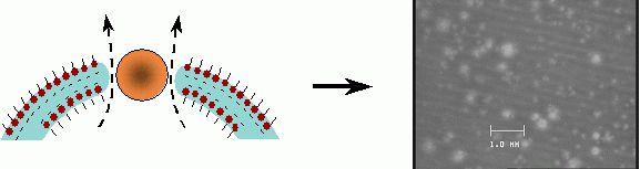Antimousse moléculaire surfynol® md-20