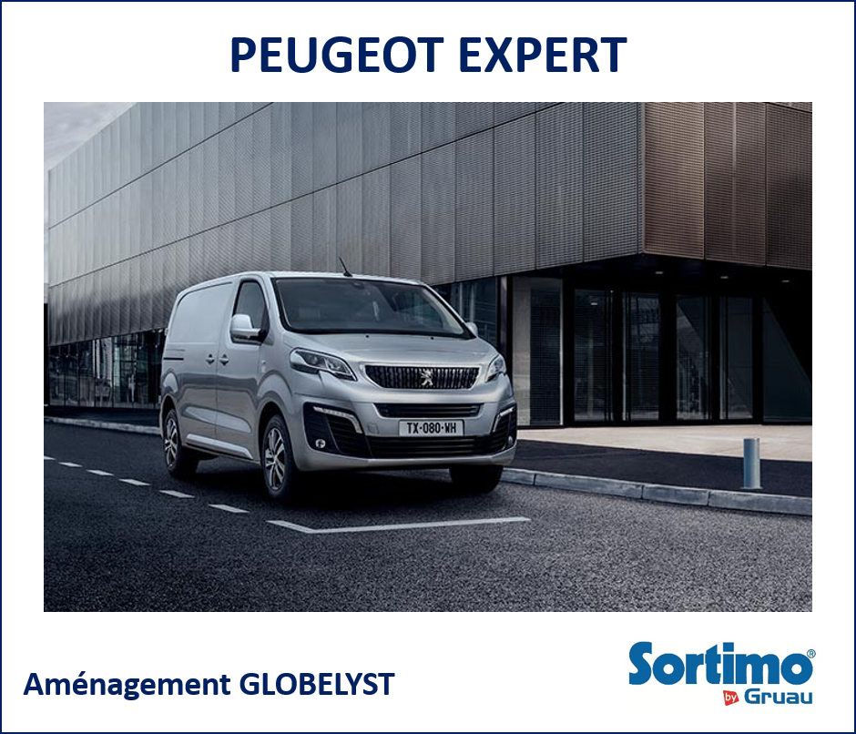 amenagement interieur pour peugeot expert. Black Bedroom Furniture Sets. Home Design Ideas