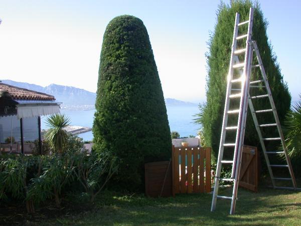 Chlorocime produits abattages elagages et taillages for Produit entretien jardin
