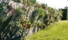 Mur vertical