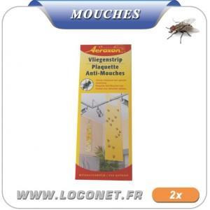 Attraper des mouches