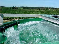 Bioréacteur epurateur d'effluents vorax