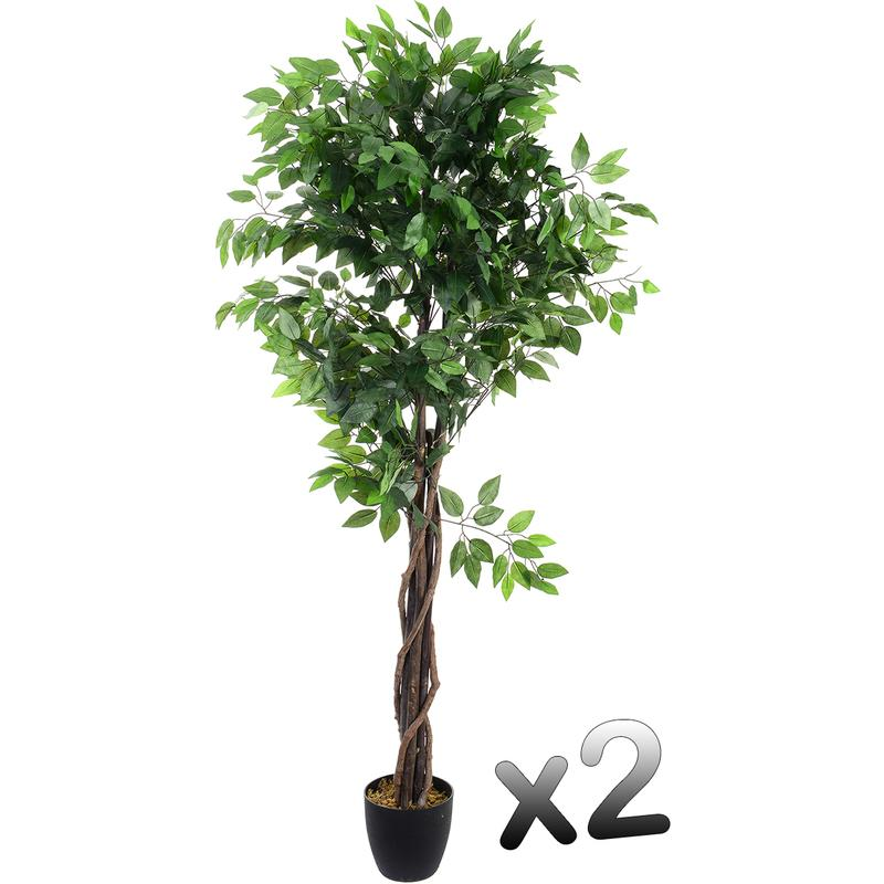 lot de 2 plantes artificielles ficus pot hauteur 180 cm pegane comparer les prix de lot de 2. Black Bedroom Furniture Sets. Home Design Ideas