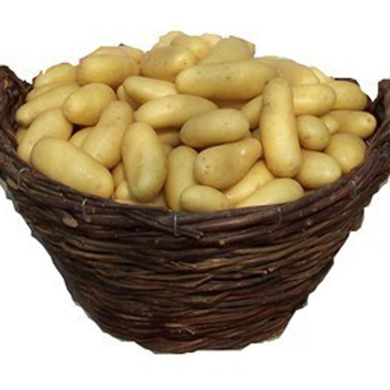 Graines de l gumes comparez les prix pour professionnels sur page 1 - Race de pomme de terre ...