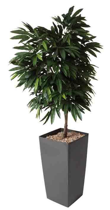 manguier plante artificielle h190 cm bac carre brillant anthracite. Black Bedroom Furniture Sets. Home Design Ideas