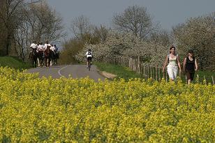 Tourisme rural tous les fournisseurs agritourisme for Chambre d agriculture luxembourg