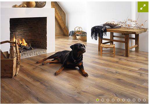 parquet stratifie elegance. Black Bedroom Furniture Sets. Home Design Ideas