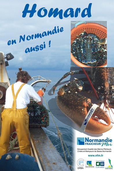 CAHIERS DES CHARGES HOMARD DE NORMANDIE