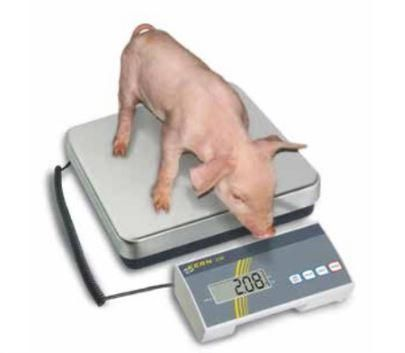 Balance veterinaire eob 300k-1lf