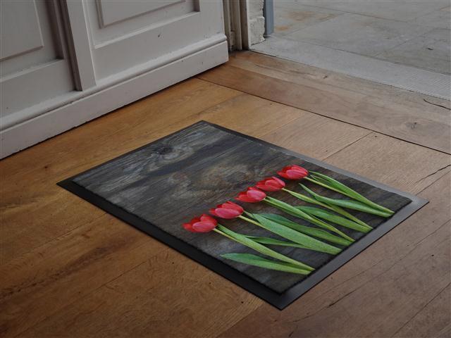 Paillassons flash mat achat vente de paillassons flash for Paillasson interieur maison
