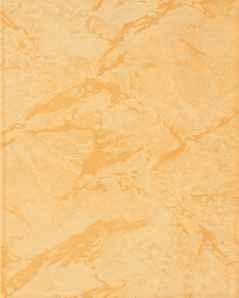 Carrelage en faience jaune fonce 20x25 for Carrelage jaune