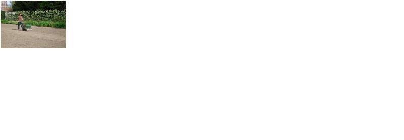 Vert azur produits de la categorie services d for Devis engazonnement