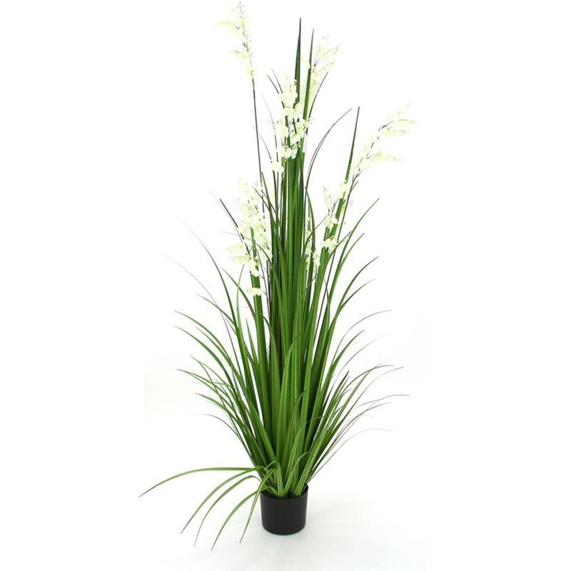 Plantes d 39 int rieur pegane achat vente de plantes d for Plante haute artificielle