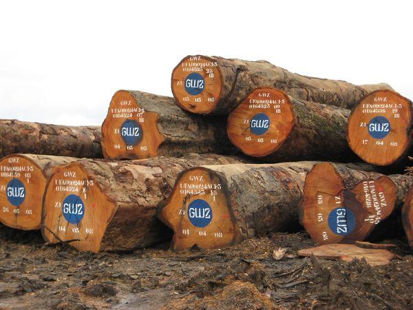 bois exotiques tous les fournisseurs bois exotique d 39 afrique bois exotique du bresil. Black Bedroom Furniture Sets. Home Design Ideas