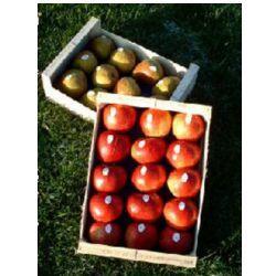Rayonnages et présentoirs pour fruits légumes