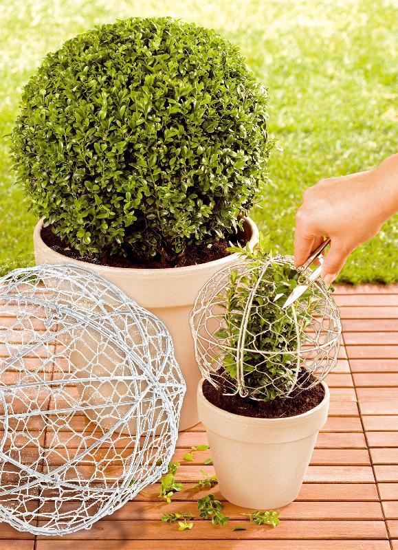 Jardini re jardin et saisons achat vente de jardini re for Jardinetsaisons