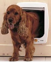 chatieres et portes pour chiens tous les fournisseurs chatieres et portes pour chien. Black Bedroom Furniture Sets. Home Design Ideas
