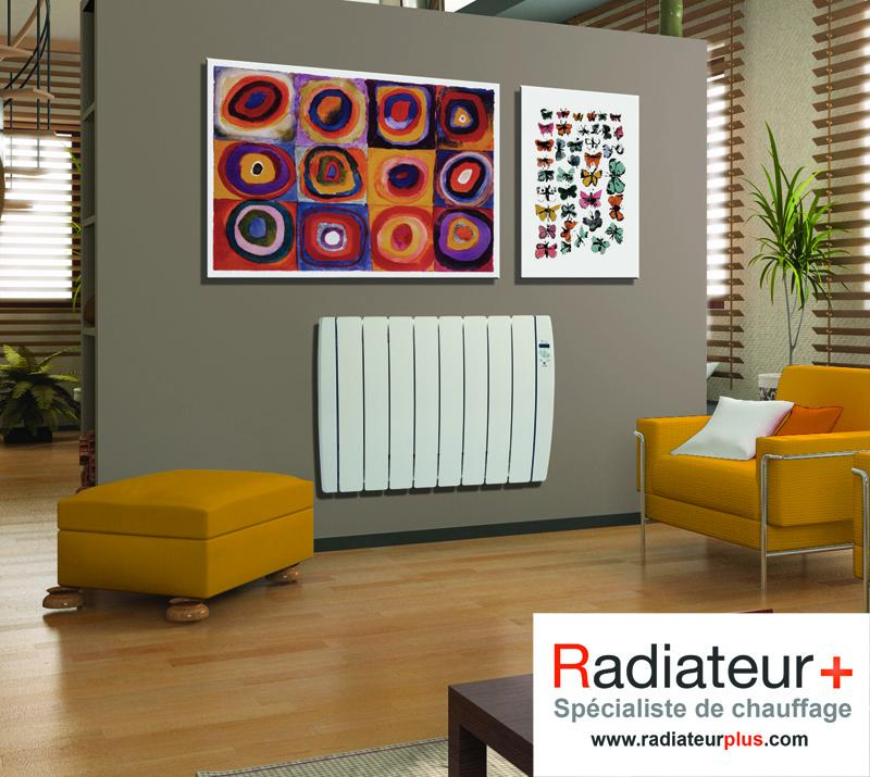 radiateur inertie fluide caloporteur haverland 1000w designer rc8v comparer les prix de. Black Bedroom Furniture Sets. Home Design Ideas