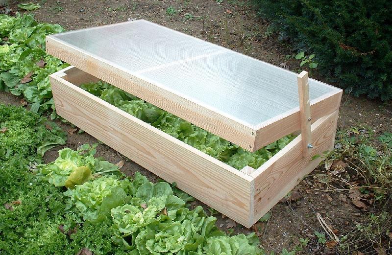 Ch ssis de jardin en bois type nantais comparer les prix - Chassis de jardin en polycarbonate ...
