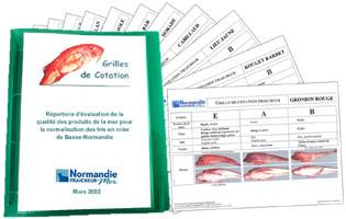 DOCUMENT  20 GRILLES DE COTATION FRAîCHEUR ET/OU PRéSENTATION