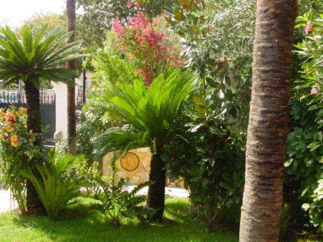 Entretien de jardin for Entretien jardin chatellerault