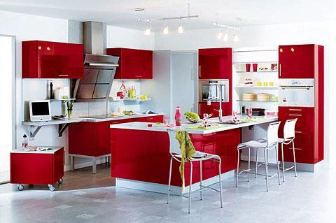 cuisine-futuriste-orchidee-rouge-204369.jpg