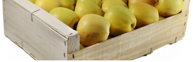 cagettes pour fruits et legumes tous les fournisseurs. Black Bedroom Furniture Sets. Home Design Ideas