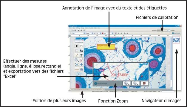 LOGICIEL D'ACQUISITION ET D'ANALYSE D'IMAGES IMAGE-FOCUS