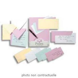 20 Enveloppes Cartes De Visite Rose Framboise Pollen