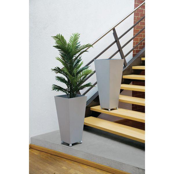palmier d 39 arec 180 cm. Black Bedroom Furniture Sets. Home Design Ideas
