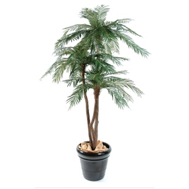 Plante et fleur d 39 interieur tous les fournisseurs for Palmier artificiel interieur
