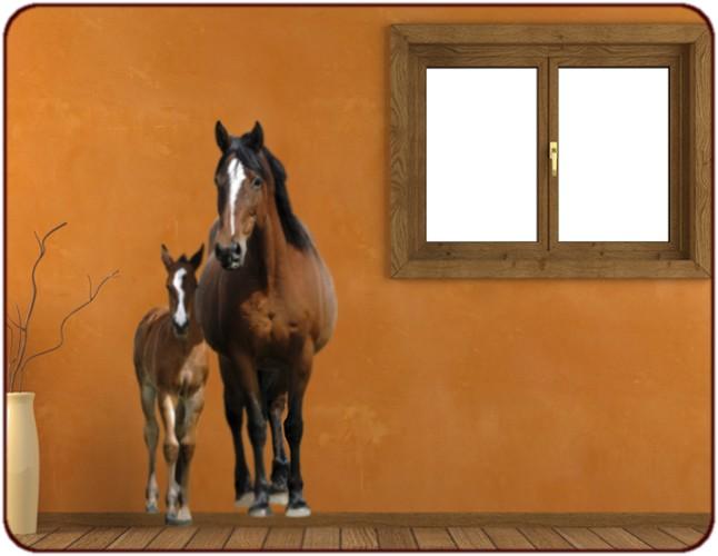 Chambre Deco Cheval : Sticker cheval et poulain