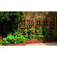 Murs végétaux - Jardins Verano - Plates bandes