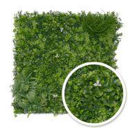 Liseron - murs végétaux - france green - plaques de 1m x 1m