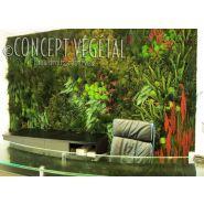 Murs végétaux  - Concept vegetal - Naturel stabilisé