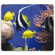 Fellowes tapis de souris earth series poissons 5909301