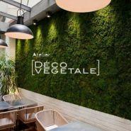 NATURE - Murs végétaux - Deco-vegetale