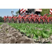 Chopstar 3-60 Bineuses agricoles - Einboeck - Inter-rangs jusqu'à 60 cm