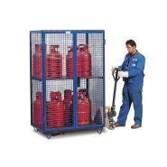 137125W - Armoire pour bouteilles de gaz gf - Denios - Porte à 2 battants