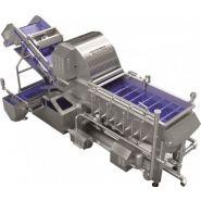 Laveuses industrielles alimentaires - Tecnoceam - 500 -5000 kg/h