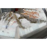 Vitrines réfrigérées pour poissonnerie
