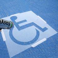 Pochoir handicapé - serenne - 1080x1080 mm