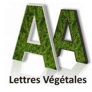 Creation-vegetale - lettrage 3d végétale - création en ligne - popdeco