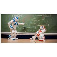 NAO - Robot éducatif - SoftBank Robotics Europe – SAS - Renforce les compétences
