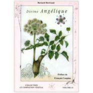 OUVRAGES - DIVINE ANGÉLIQUE (VOL.13)