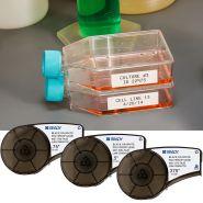 BMP21-PLUS - Etiquettes médicales et pharmaceutiques - Brady - résistantes aux températures
