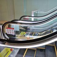 Fm I-302 (800) Escalator de centre commercial Escalier mécanique - FUJI - 0.5m / s