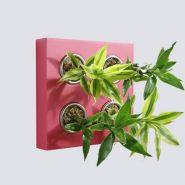 Bouquet classic - fushia 4 plantes